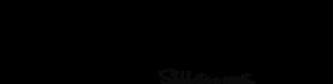 hush hush logo black